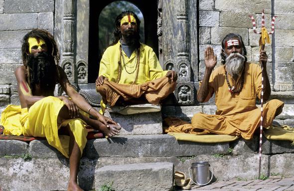 The Sadhus and Sadhvis