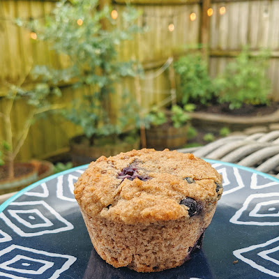 One muffin with a few blueberries sits on a blue geometrical plate with a backyard in the background