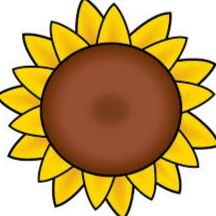 mewarnai gambar bunga matahari untuk anak-anak