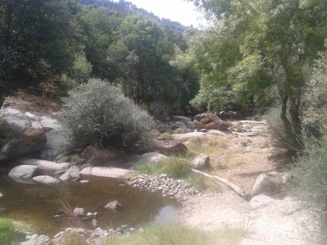 Rio Dão quase seco