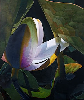 fondos-oscuros-bodegones-flores