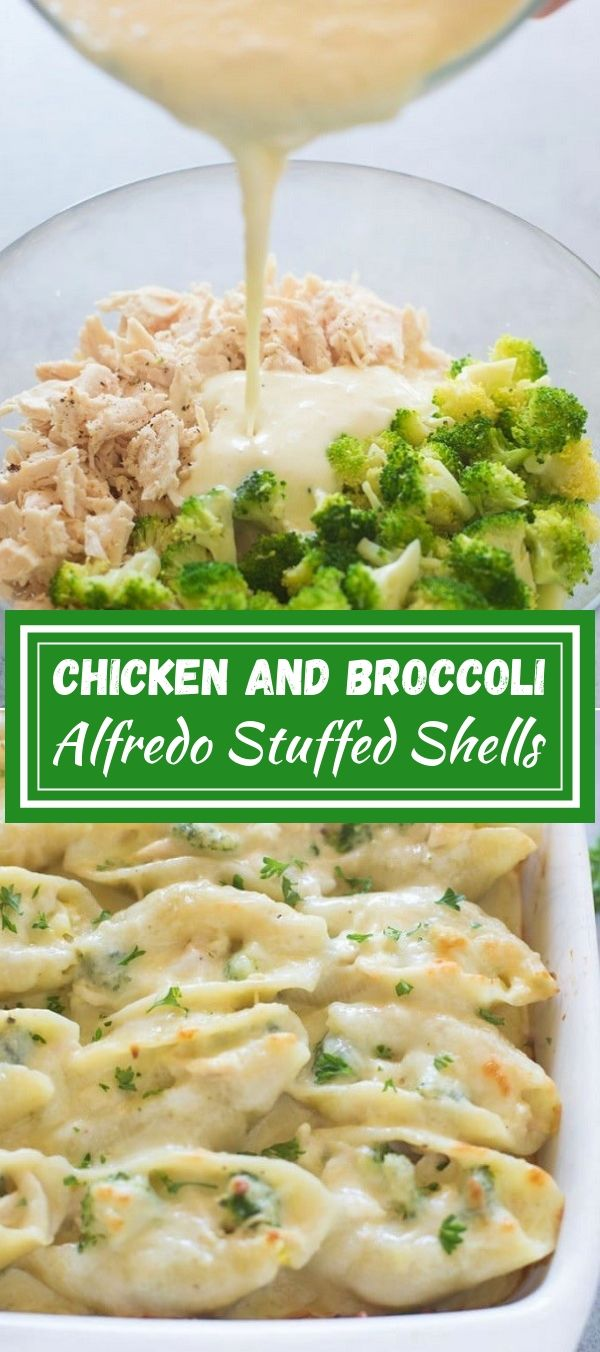 Chicken and Broccoli Alfredo Stuffed Shells | Chicken Recipes Healthy, Chicken Recipes Easy, Chicken Recipes Baked, Chicken Recipes 21 Day Fix, Chicken Recipes For Dinner, Chicken Recipes Casserole, Chicken Recipes Crockpot, Chicken Recipes Keto, Chicken Recipes Grilled, Chicken Recipes Shredded, Chicken Recipes Mexican, Chicken Recipes Quick, Chicken Recipes Boneless, Chicken Recipes Pasta, Chicken Recipes Oven, Chicken Recipes Instant Pot. #chicken #alfredosauce #broccoli #healthyfood #dinner