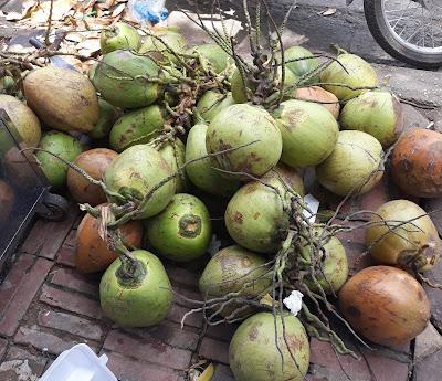 ベトナムのココナッツ