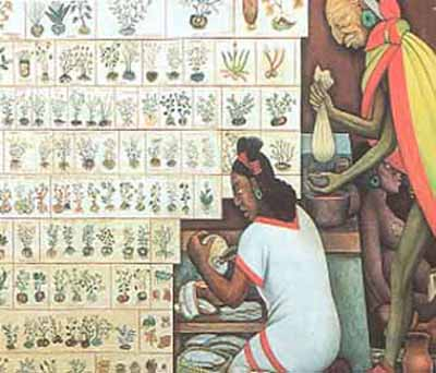 mesoamerican culture essay As you read the following essay 1500 ce classic mesoamerican level by being able to borrow some ideas and techniques from mesoamerican culture.