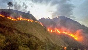 Permukiman Warga Nyaris Terbakar, Akibat Kebakaran Lahan di Kecamatan Pangururan