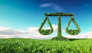 ICEL: Hukum Lingkungan di Indonesia Alami Kemunduran
