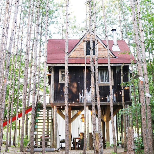 Lynne Knowlton's Canadian treehouse