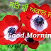 Top 10 Sat Shri Akal Ji  Good Morning Images, Pictures, Photos, Greetings for WhatsApp