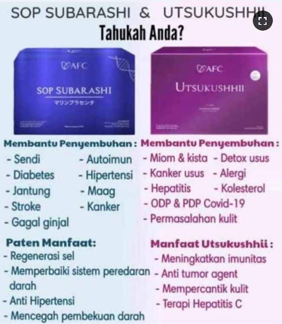 Jual SOP Subarashi Halal - Obat Herbal Diabetes, Jual di Kepulauan Meranti. SOP Subarashi Untuk Anak.