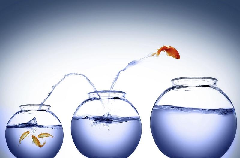 Motivação e Ambição São os Ingredientes do Sucesso