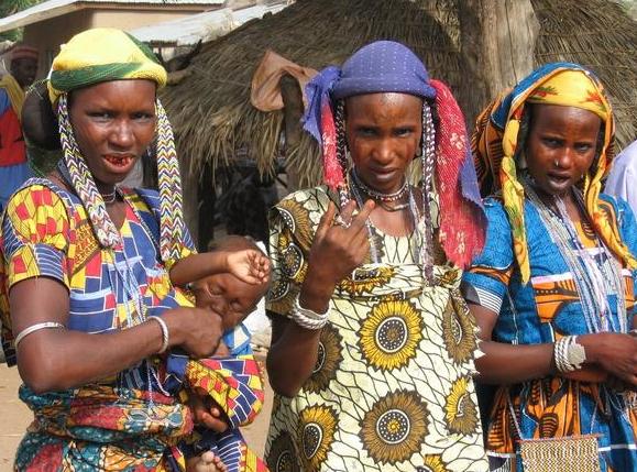 incurable disease kills 70 fulanis ifelodun kwara state