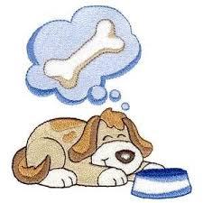 cão sonhando