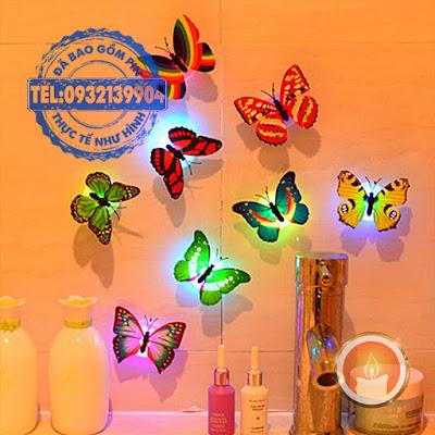Led bươm bướm phát sáng dán tường