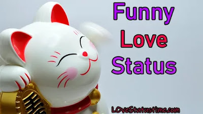 Status Funny Love Hindi English
