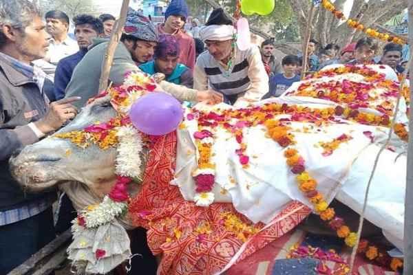 palwal-alika-village-nandi-baba-bhola-death-antim-sanskar-news