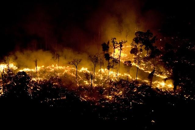 Rondônia está entre os estados da Amazônia que mais promoveram queimadas