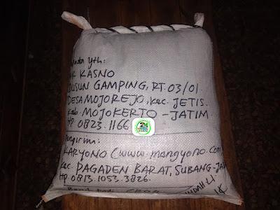Benih Padi Pesanan  KASNO Mojokerto, Jatim.   (Setelah di Packing).