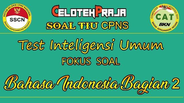 Soal TIU CPNS 2021 Bahasa Indonesia Bagian II