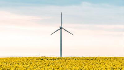 Wallpaper free windmill, flowers, field, landscape