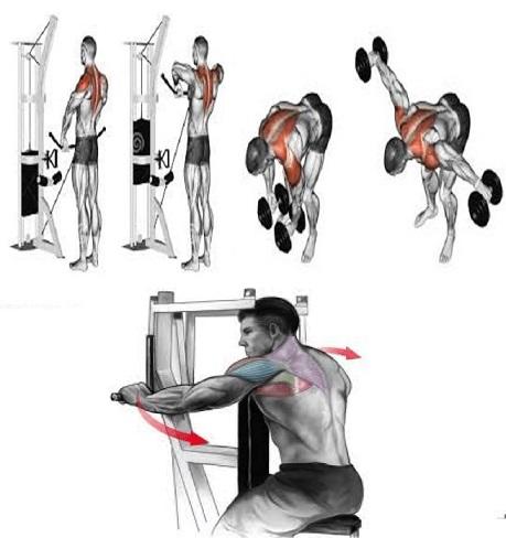 Top 6 Shoulder Exercises for Mass