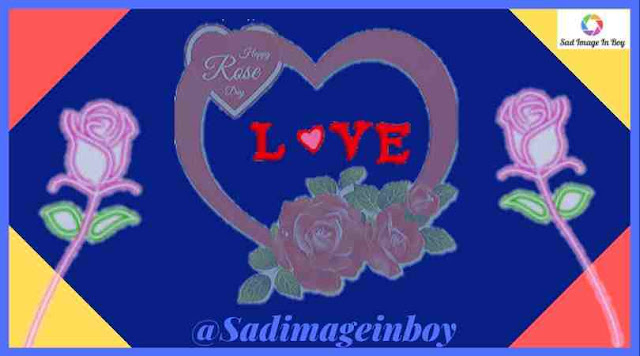 Rose Day Images | when is rose day, rose images free download, good morning have a nice day with rose