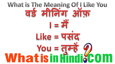 What is the meaning of i like you in Hindi