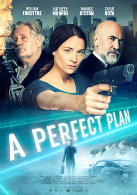 A Perfect Plan 2020 HDRip 720p Dual Audio In Hindi English Download By Tamilrockers