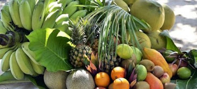 Medicinal Fruits