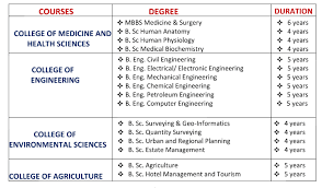 Courses Offered and Requirements