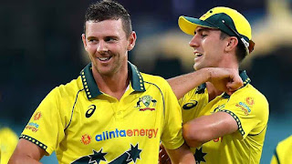 Australia vs New Zealand 1st ODI 2020 Highlights