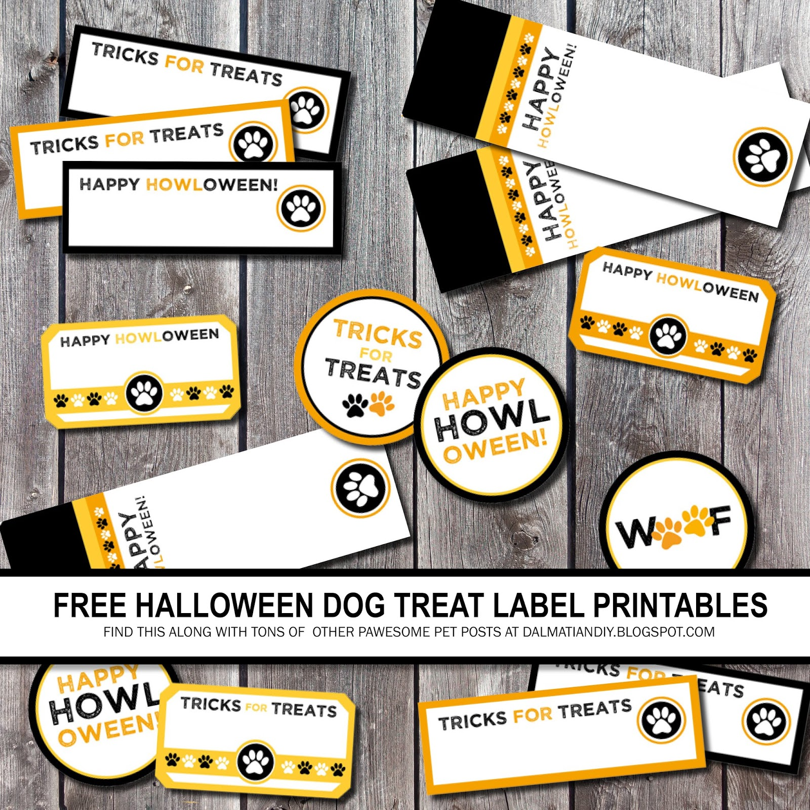 photograph about Free Printable Halloween Labels referred to as Free of charge Printable Halloween Doggy Tags + Practical Puppy Basic safety Recommendations