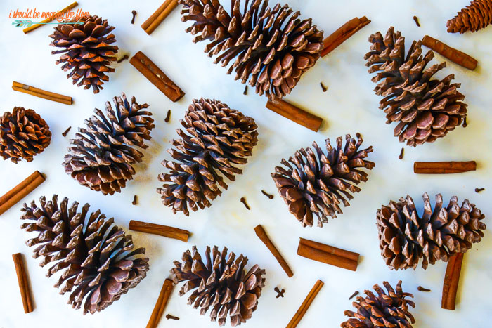 Easy Scented Pine Cones