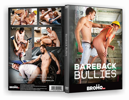 DVD Bareback Bullies xxx 2019 - ISO