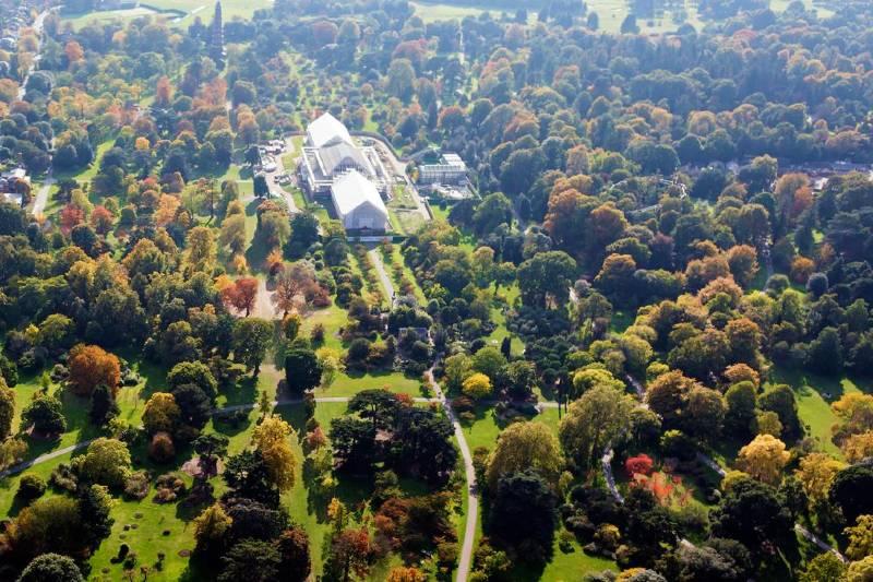 Arboreto de Kew a vista de pájaro