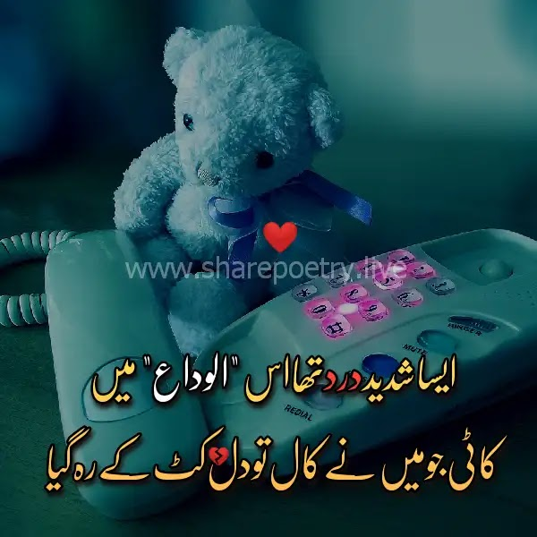Aisa shaded Dard tha use Alvida mein-sad poetry in urdu 2 lines
