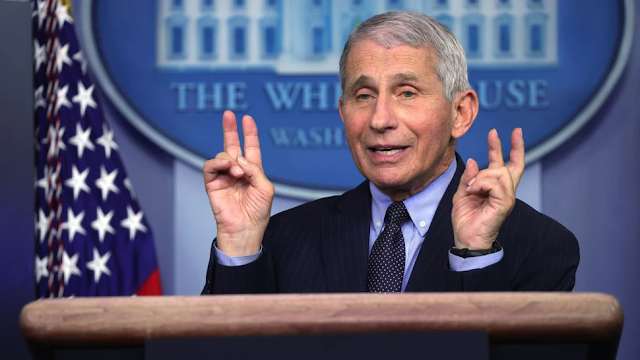 Fauci On If U.S. Will Return To Normal By Next Year: 'It Really Depends On' How You Define Normal