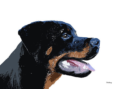 White Rottie Rotties Dog Dogs Animals Prints Rottweiler Rottweilers