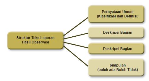 Struktur Teks Laporan Hasil Observasi Bhs Indonesia