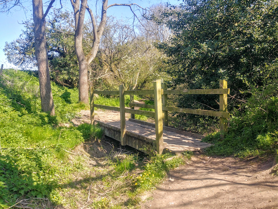 A footbridge over Braughing Bourne