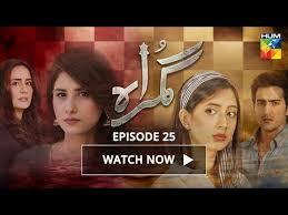 Gumraah Episode 25 HUM TV Drama | 28 November 2017