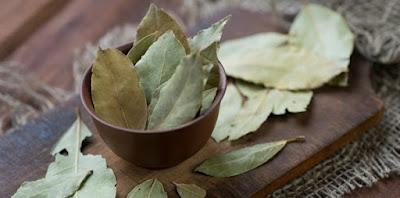 Τα «ιερά» φύλλα δάφνης με τα πολύτιμα οφέλη