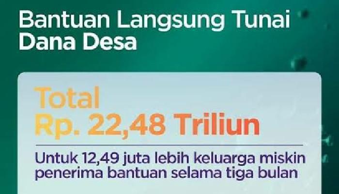 76 Kabupaten Telah Cairkan BLT Dana Desa