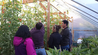 Touring a green house