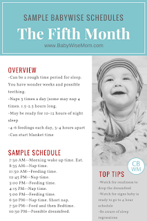 Sample Babywise Schedules: The Fifth Month