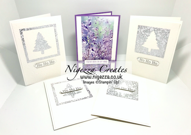 Nigezza Creates with Stampin' up! Feels Like Frost DSP