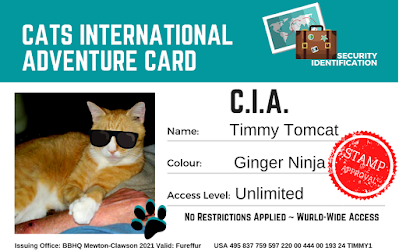 Timmy International C.I.A. Security I.D. ©BionicBasil®