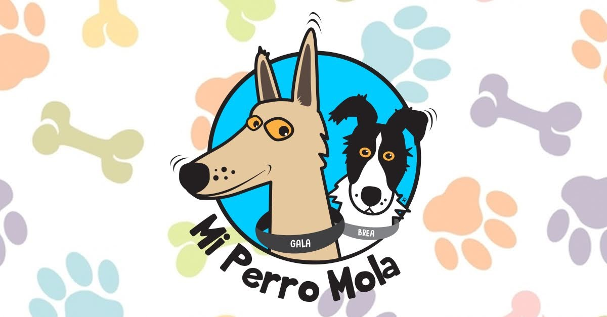 Blog Mi Perro Mola