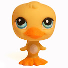 Littlest Pet Shop Seasonal Duck (#1062) Pet