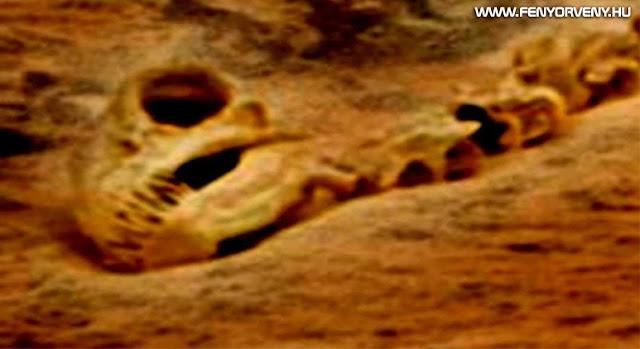 Dinoszaurusz csontváz a Marson?