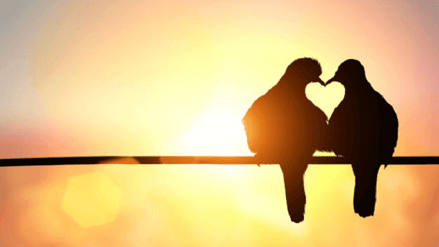 Kumpulan Puisi Cinta Dalam Doa